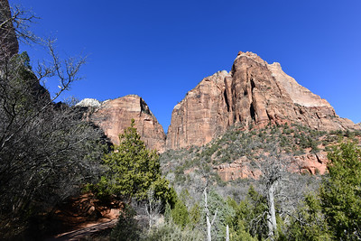 Zion National Park - Emeral Pools Trailhead