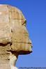 The Sphinx<br /> Giza Plateau<br /> Cairo, Egypt