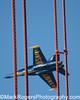 Bird on a Wire<br /> Blue Angel - Golden Gate Bridge<br /> San Francisco