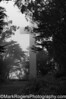 Mount Davidson Cross<br /> San Francisco, California