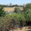 California036 August07