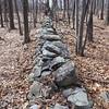 Stone wall in Camp Monroe (4/17/15).