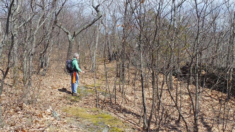 Lenape Ridge Trail, Deerpark, NY - 4/13/15