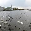 Reykjavik33-34 10-16-10