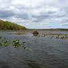 Hackensack_River5 4-19-10
