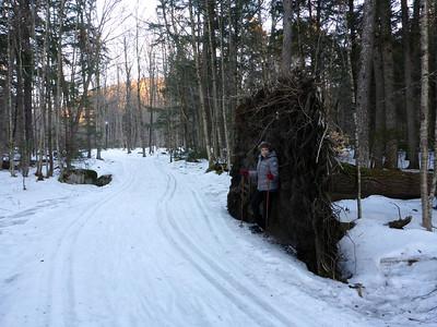 Hiking on the ski trails - 3/6/16.