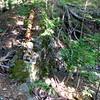 Remnants of dam in Buttermilk Falls Park.