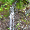 Small waterfall driving up Mt. Greylock (6/14/14).