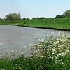 Veere16 mei_2008
