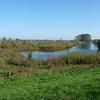 Ijssel near Deventer