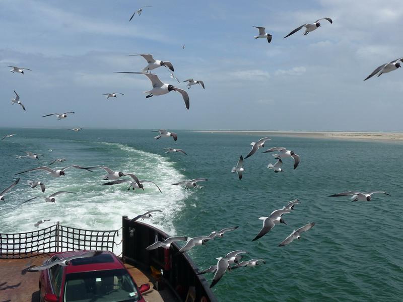 Hatteras_ferry5 4-27-11
