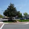 Leonardtown_MD1 4-24-11