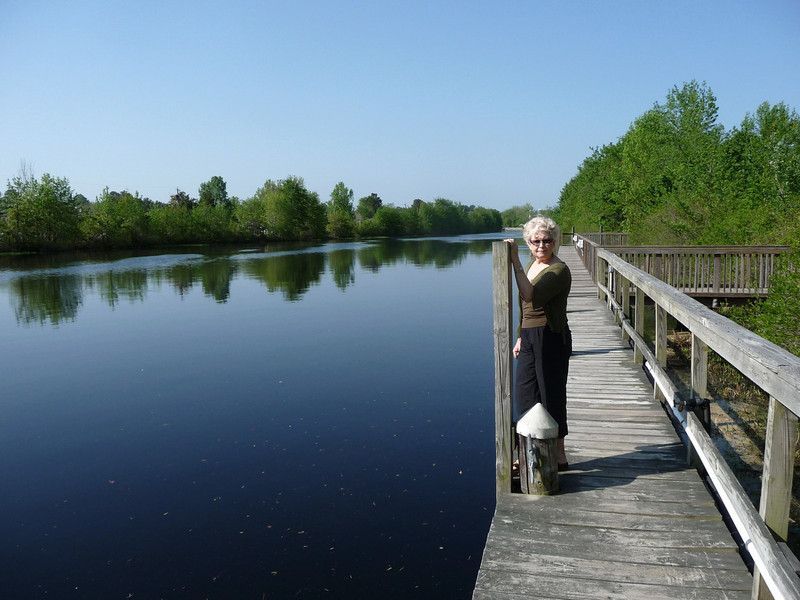 Dismal_Swamp_Canal01 4-25-11