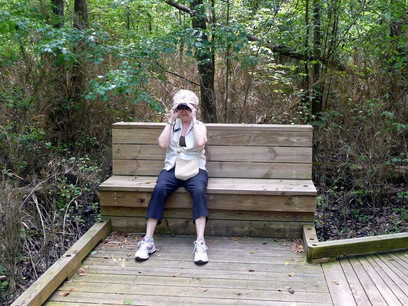 Dismal_Swamp_Canal25 4-25-11