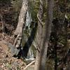 Natural_Bridge-57-58 3-13-12