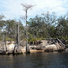 Saint_Marys_River2 3-10-10