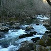 Little_River09 3-6-10