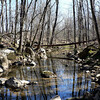Natural_Bridge08 3-6-10