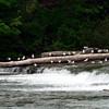 Niagara_Falls105 7-22-09