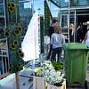 Flower show in the city hall of Koksijde, Belgium