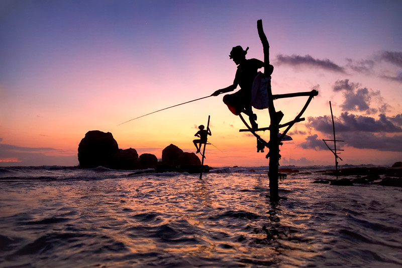 Traditional Stick Fisherman of Koggala in Southern Sri Lanka at Sunset