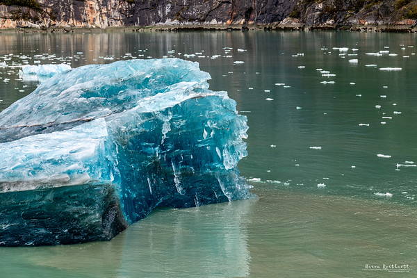 Iceberg from Dawes Glacier Floating in the Endicott Arms Fjord, Alaska
