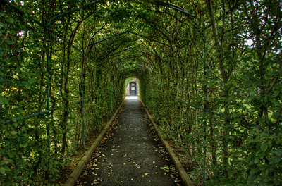The walkway to the rose garden at Dromoland Castle, Newmarket-on-Fergus, Co. Clare, Ireland