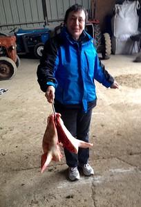 Sylvie et une tête de cochon