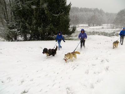 Géradmer (Vosges): Décembre 2014