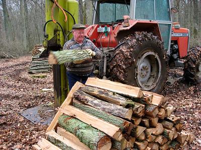 Papa fend du bois de chauffage (Mars 2008)
