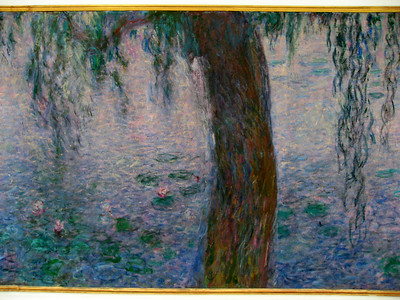 Les Nympheas (Monet): Musee de l'Orangerie (March 2008)  www.musee-orangerie.fr