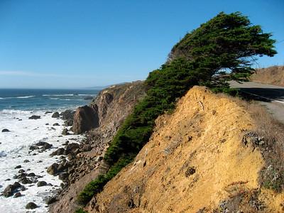 Windy California coast