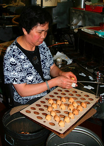 Golden Gate Fortune Cookie Factory (China Town)