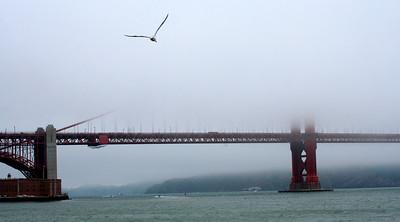 Golden Gate in the fog