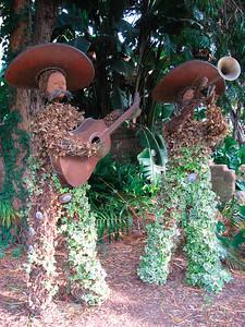 Quail Botanical Gardens in Encinitas