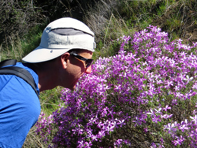 Dave smelling the flowers...