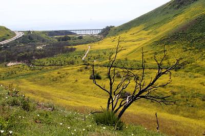 05 railtrack on bridge