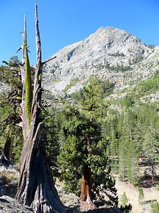 Steep climb to Evolution Meadow