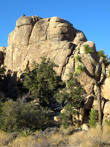 Climber at Hidden Valley