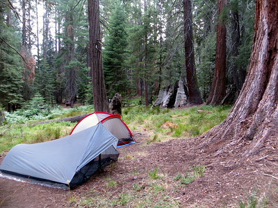 First night at Atwell Mill (Sequoia National Park)
