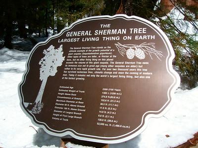 10 General Sherman