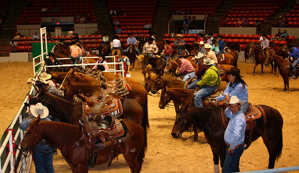 Rodeo in Houston (03/2009)