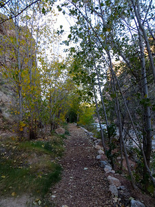 Path along the Virgin river