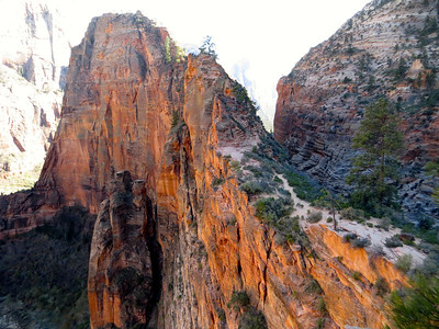 View down Angel's Landing