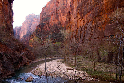 Beautiful narrows in Zion