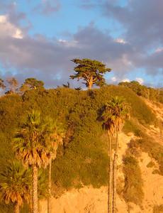Arroyo Burro Beach (bluff where we got married)