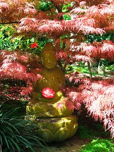 Buddha in the Japanese Garden.  http://www.lotusland.org/gardens/japanese.htm