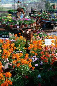 Rolling Hills Garden: www.rollinghillsgardencenter.com