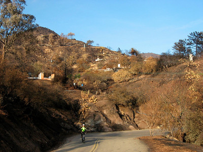 Our favorite bike ride is on Mountain Drive. Today (day after Thanksgiving), it's very sad to see the aftermath of the Tea Fire.