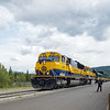 Alaska Railroad pulling into Denali National Park, Alaska.